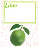 Label,sticker,tag design with lime and frame for price Royalty Free Stock Photo