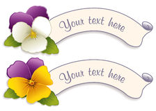 Label Tags with Johnny Jump Ups. Two vintage label tags with Lavender, Cream & Gold Johnny Jump Ups (Pansies). Copy space to customize with your text Stock Image