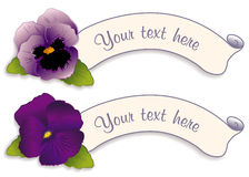 Label Tags with Lavender & Purple Pansies Stock Photo