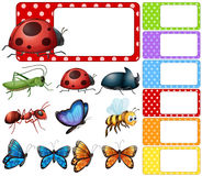 Label template with different types of insects royalty free illustration