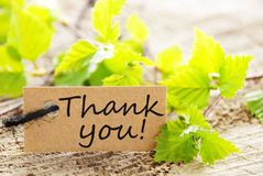 Label with thank you!. A natural looking label with thank you and green leaves and wood as background royalty free stock images