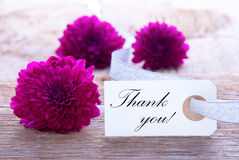 Label with Thank You royalty free stock image