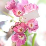 Label, tulipes images libres de droits