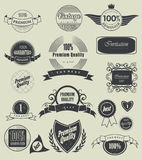 Label, typography, calligraphic design elements Royalty Free Stock Images