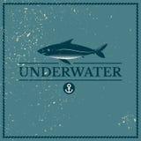Label underwater fish Royalty Free Stock Photo