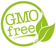 Label vert rond avec la feuille et le texte GMO libre pour génétiquement non modifié illustration libre de droits
