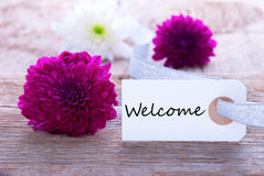 Label with Welcome Stock Image