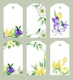 Label whis spring flower and floral arrangements on white background vector illustration