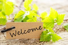 Free Label With Welcome Stock Image - 31166321