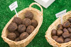Labeled Baskets of Black Walnuts and Chestnuts. Closeup of Straw Baskets of Black Walnuts and Chestnuts with labels displayed at state fair competition royalty free stock photos