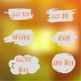 Labels avec des conceptions végétariennes et brutes de régime alimentaire Ensemble d'étiquettes et d'éléments d'aliment biologiqu Image libre de droits