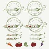 labels avec des pois avec les légumes et la pomme Images libres de droits