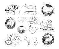 Labels and badges with a butcher's shop. Chicken, Beef, Pork. Vector Illustration Stock Photography