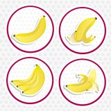 Labels of bananas Stock Photography