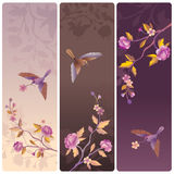 Labels or banners with bird and blossom tree Royalty Free Stock Image