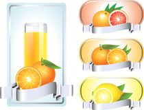Labels with citrus fruits in vector Royalty Free Stock Photo