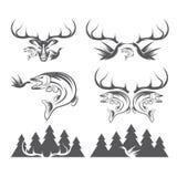 Labels de chasse et de pêche de vintage et éléments de conception Images stock