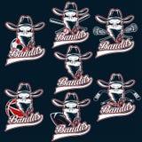 labels de sports de bandit de crâne Image stock