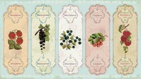 Labels de vintage avec des baies illustration stock