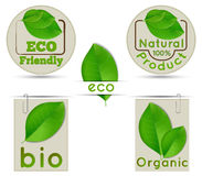 Labels ecology and bio and natural Royalty Free Stock Photography