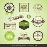 Labels et cadres frais de produit biologique de vintage Photographie stock libre de droits
