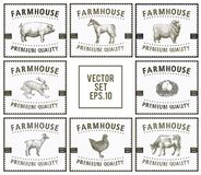 Labels with farm animals. Set templates price tags for shops and markets of organic food. Vector illustration art Royalty Free Stock Photos