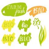Labels frais bio et de ferme avec les feuilles dessinées de calligraphie en main Vecteur Images libres de droits
