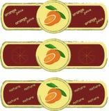 labels La naranja, naranja cortada, verde se va en el fondo amarillo claro, pintura, Borgoña, marco de color caqui ilustración del vector