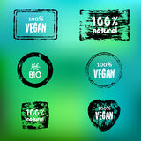 Labels with organic subjects Royalty Free Stock Photo