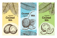 Labels for package design with hand drawn illustrations of coconut. Vector template with place for your text royalty free illustration