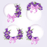 Labels with purple crocus flowers Stock Photos