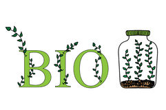 Labels set - eco bio healthy. Royalty Free Stock Photography
