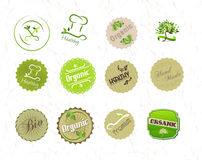 Labels set for organic natural eco food and produc vector illustration