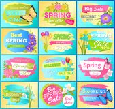 Labels Set Super Offer Spring Sale Adverts Flowers. Labels set super offer spring big sale adverts snowdrops, anemone buds, branch of sakura and daisy flowers Stock Images
