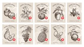 Price tags for berries and fruits. Labels with various fruits, berries and inscriptions. Set templates price tags for shops and markets of organic vegetarian Royalty Free Stock Photo