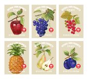 Price tags for berries and fruits. Royalty Free Stock Photography