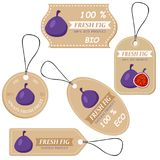 Labels with various fruits,for figs. And inscriptions. Set templates price tags for shops and markets of organic vegetarian food. Vector illustration Royalty Free Stock Photos