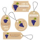 Labels with various fruits,for grape. And inscriptions. Set templates price tags for shops and markets of organic vegetarian food. Vector illustration Stock Images