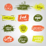 Labels with vegetarian and raw food diet designs. Organic food tags and elements set for meal and drink,cafe, restaurants Royalty Free Stock Photo