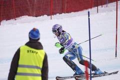 Laberinto de Tina - esquiador alpestre esloveno fotografía de archivo libre de regalías