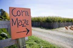 Laberinto del maíz Fotografía de archivo libre de regalías