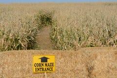 Laberinto del maíz Imagen de archivo libre de regalías
