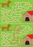 Laberinto del perro basset imágenes de archivo libres de regalías