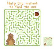 Laberinto del vector, laberinto con la marmota y nuez Imagen de archivo libre de regalías