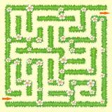 laberinto Juego del laberinto para los cabritos Hierba verde y manzanillas Imágenes de archivo libres de regalías