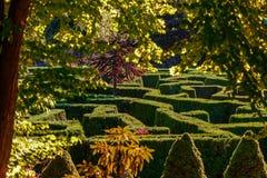 Laberinto verde de arbustos en el parque del ` s GA botánico de la ciudad Imágenes de archivo libres de regalías