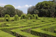 Laberinto verde del parque Imagen de archivo