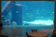 Laberinto y salón del acuario Fotografía de archivo