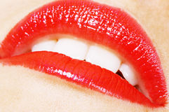 Labios apasionados de la mujer Imagen de archivo