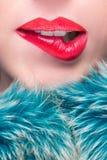 Labios atractivos Detalle rojo del maquillaje del labio de la belleza Fotos de archivo libres de regalías